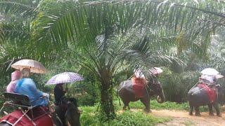 Экскурсия в Таиланд. Часть 2