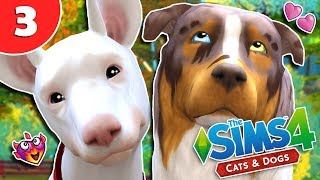 UNEXPECTED WOOHOO EP 3 THE SIMS 4 CATSDOGS