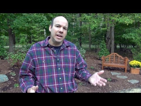 Choosing a Landscape Designer or Landscape Contractor