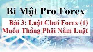 Bí mật Pro Forex  Bài 3 - Luật chơi Forex - Lot là gì? Đòn bẩy Forex là gì? Pip là gì? Point là gì?