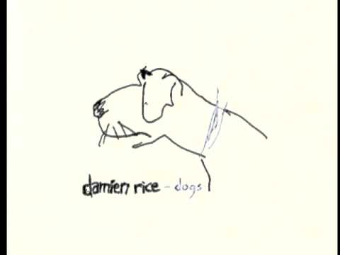 Damien Rice - 9 Crimes (Live at Wisseloord Studios)