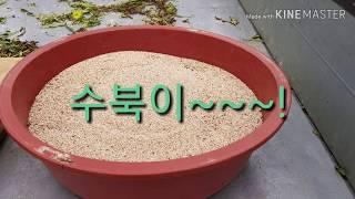 한국기행 청도 농부놀이터 편 Korea travel