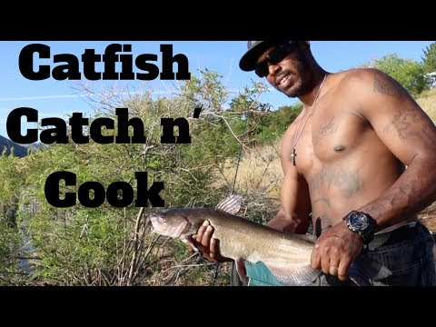 Catfish Catch n' Cook for Breakfast? -- MisAdventures & Misdemeanors
