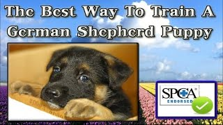 ♥♥♥ How To Train A German Shepherd Puppy [ QUICKLY ] Potty Train A German Shepherd Puppy ☼☼