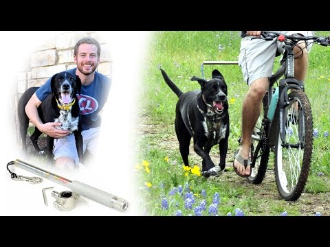 The Official WalkyDog Bike Leash | Walky Dog Bicycle Attachment Overview