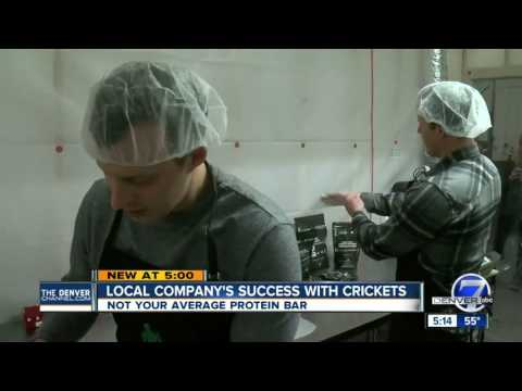 Local company finds unique use for crickets