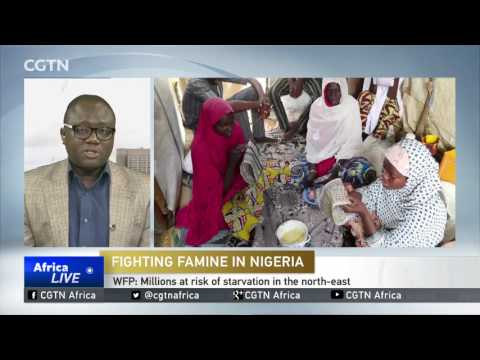 WFP: Boko Haram is affecting distribution of food aid