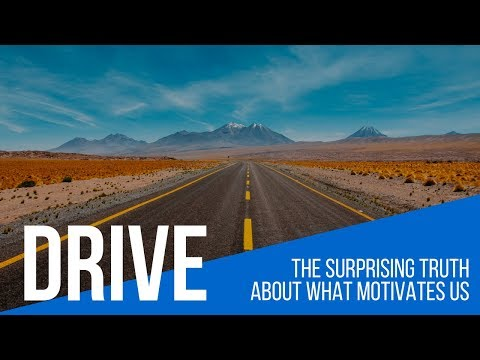 drive--the-surprising-truth-about-what-motivates-us