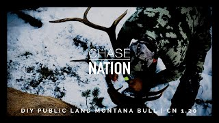DIY Montana Public Land Elk Bow Hunt | S1 E20