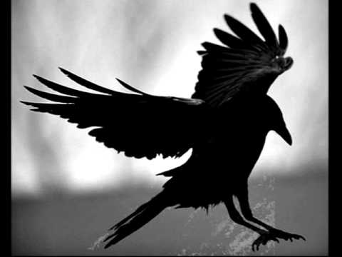 Клип Александр Маршал - Чёрный ворон