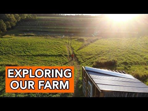 Summer Farm Tour at Gold Shaw Farm