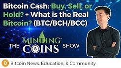 Bitcoin Cash: Buy, Sell, or Hold? + What is the Real Bitcoin? (BTC/BCH|BCC)