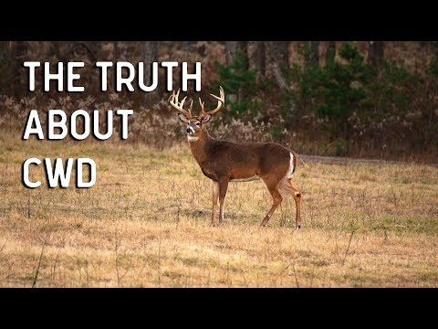 CWD | Chronic Wasting Disease an Expert Panel Exposes the Truth