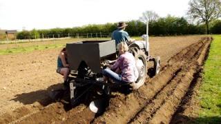 Potato Planting Wih A Ferguson Tef-20 And Ferguson Potato Planter