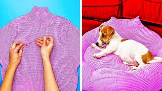 14 CUTE DIY IDEAS FOR YOUR PETS