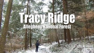 Tracy Ridge - Winter Backpacking Allegheny National Forest