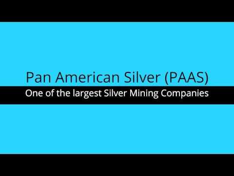 Pan American Silver Company Profile