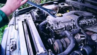 5 cylinder symphony  channel welcome wagon