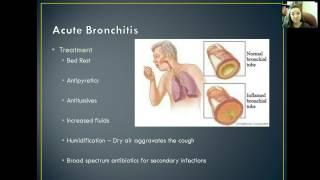 Respiratory: Acute Bronchitis