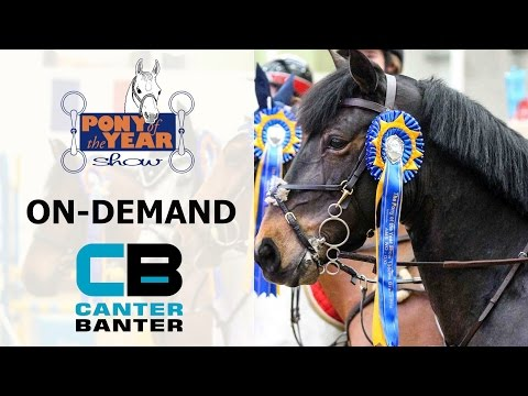 Day 3 - POYS 11&Under Grand Prix - Pony of the Year 2017