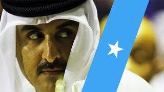 Wararkii ugu Danbeeyey Qatar oo Shaqo Abuur usamaynaysa 70-kun Dhalinyarada Soomaaliyeed