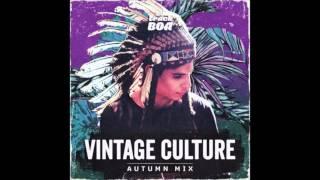 Elekfantz - She Knows (Vintage Culture & Illusionize Remix)