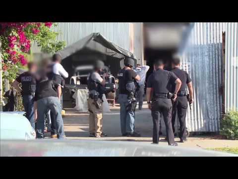 Homeland Security Investigations