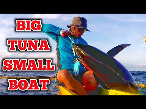 33kg Yellowfin Tuna Using Deep Liner Spy-V Lure