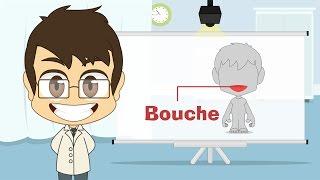 Human Body Parts in French for Kids - أجزاء جسم الإنسان باللغة الفرنسية للأطفال