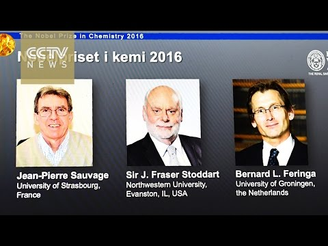 French, British and Dutch scientists win Nobel Prize in Chemistry