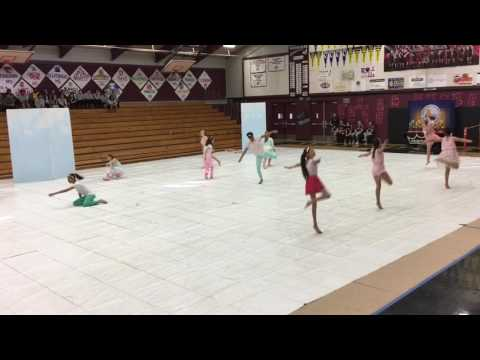 Albert Einstein Middle School Color Guard Competition 3/11/17