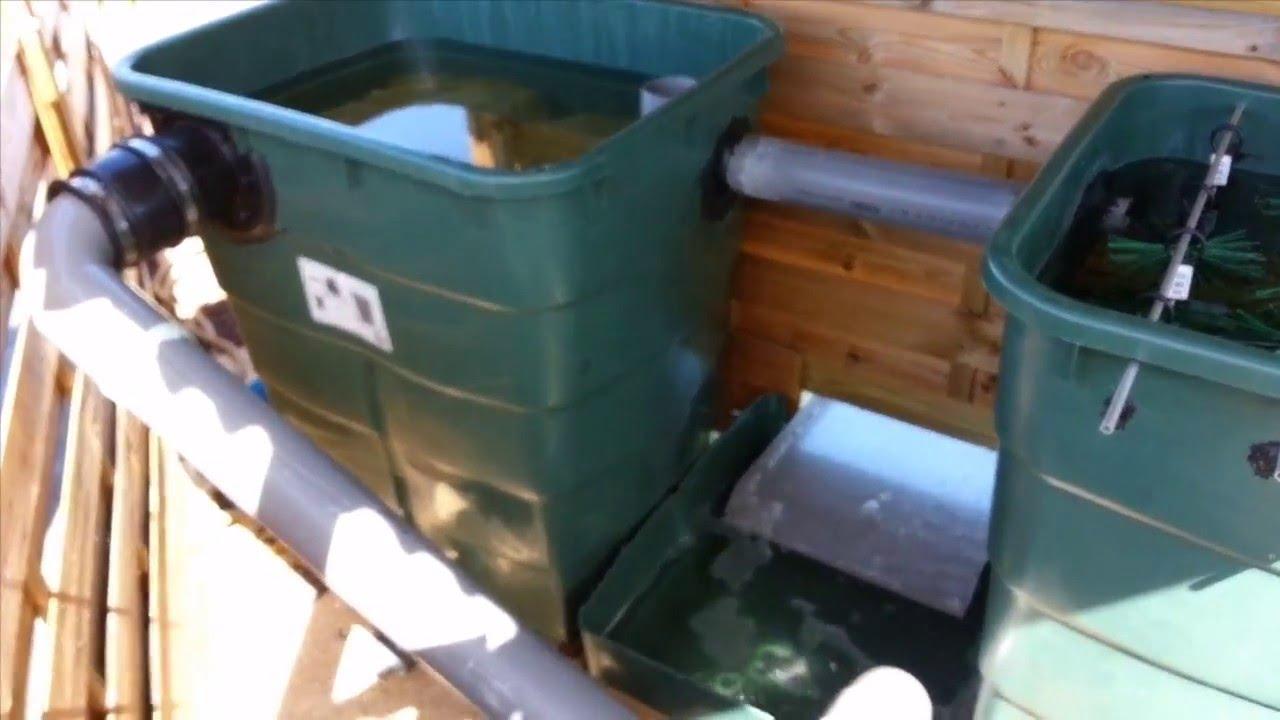 Bassin  filtration maison   lame deau  YouTube