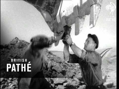 Jarkak-Tashkent Pipeline (1960)
