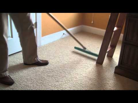 Carpet Cleaning Information - Melbourne, FL