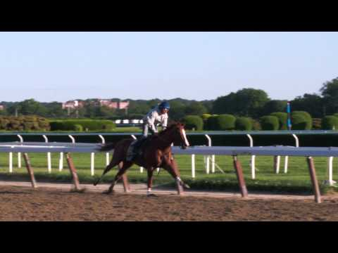 California Chrome Breezing at Belmont 5-31-14