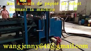 machine à fabriquer des plateaux à oeufs-whatsapp:0086-15153504975