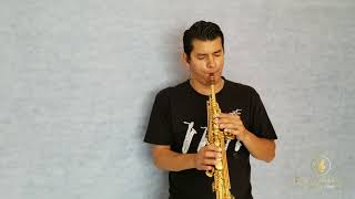 Diogo Pinheiro - My Heart Will Go On - Sax Cover