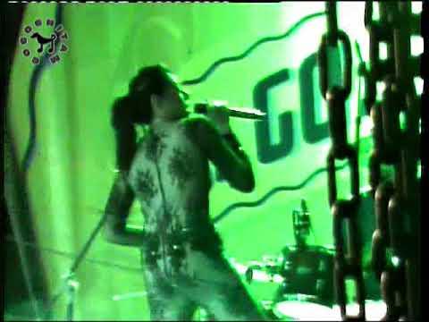 GOGOGO BARENG - IVA LOLA - (TUA TUA KELADI) - DJINGGO