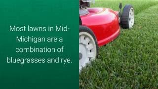Top Mid Michigan Lawn Care Questions Reder Landscaping