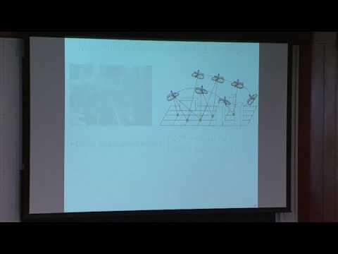 From hummingbirds to honeybees: algorithms for agile micro aerial vehicles with on-board perception