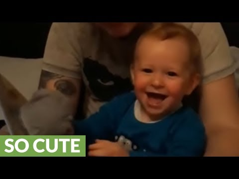 Baby boy can't stop giggling during bedtime story