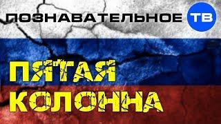 Что такое ПЯТАЯ КОЛОННА Познавательное ТВ Евгений Фёдоров