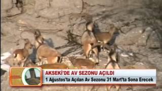 AKSEKİ'DE AV SEZONU AÇILDI