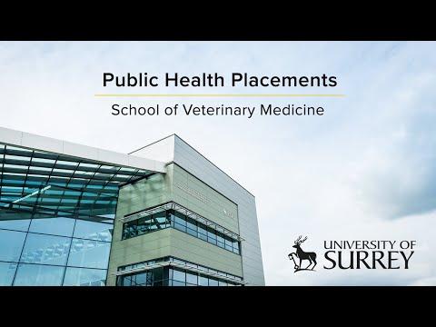 Play video: University of Surrey School of Veterinary Medicine Public Health Placements | University of Surrey