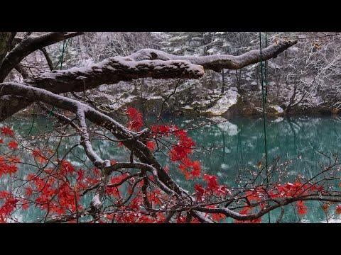 Colored Lakes of Fukushima | Mount Bandai's Goshiki-numa