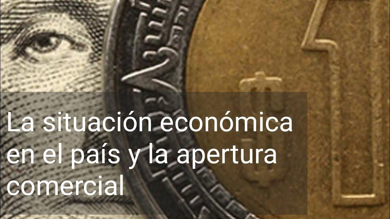 La situación económica en el país y la apertura comercial - Historia