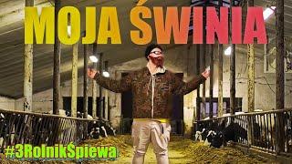 TEAM X - MOJA MIŁA (Official Music PARODIA) MOJA ŚWINIA
