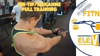 Pull Training / Teekanne - Caramel Apple Pie & Lemoncake