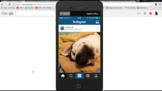 How To Restore Disabled Instagram Account