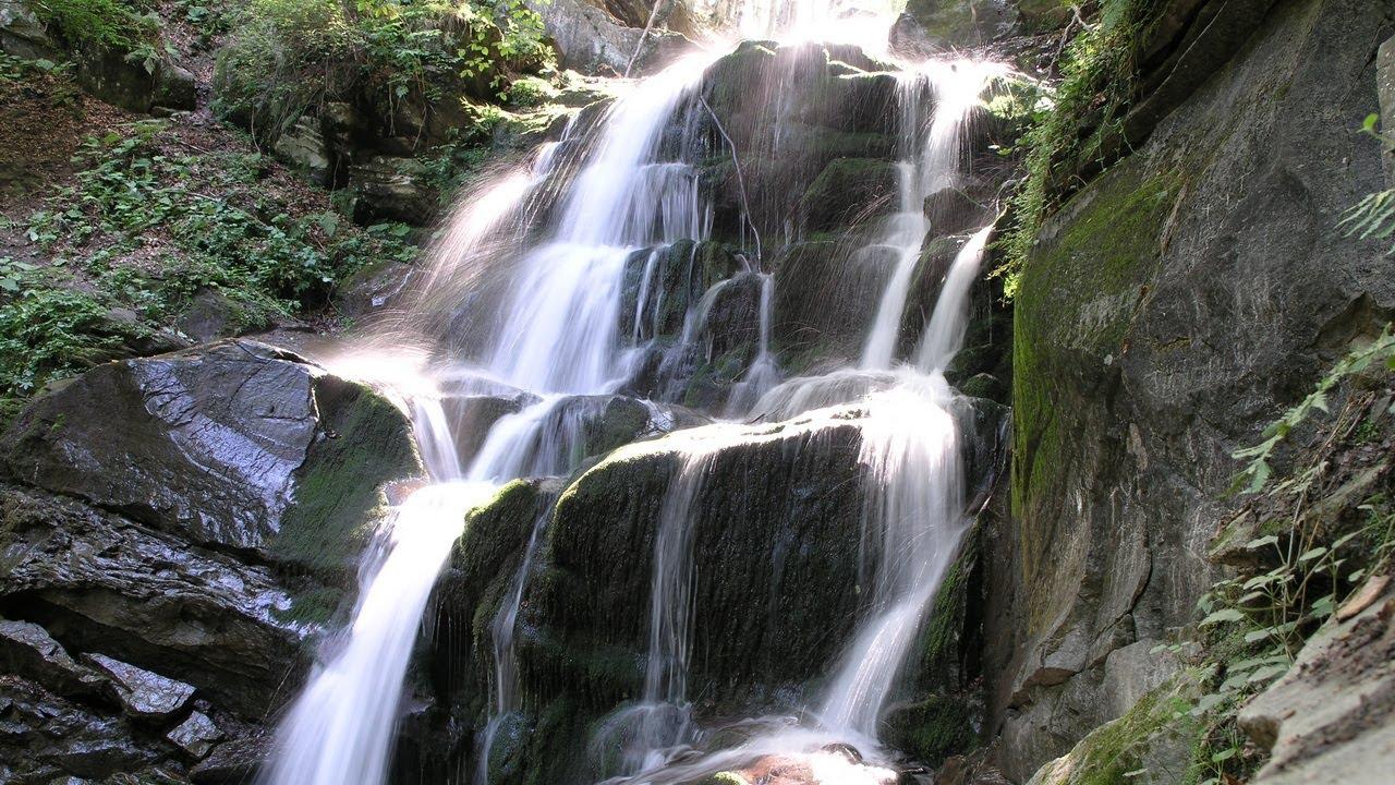 """""""Pylypets  водопад Шипот украина""""的图片搜索结果"""